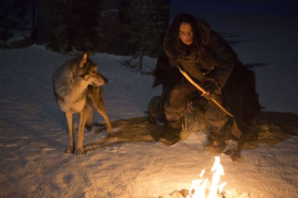<em>Alpha</em>, the story of a boy and his wolf's survival, debuted in fifth with $10.35 million. (Photo: Sony Pictures)