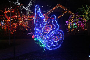 A giant butterfly made out of colored lights. (Photo: Brookside Gardens)