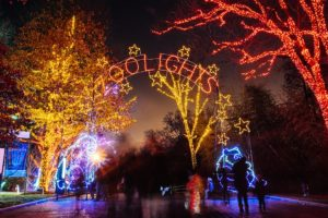 People at the zoo enterance with the word Zoolights in lights arched over the walkway and the trees decorated with more lights. (Photo: National Zoo)