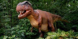 Animatronic T. Rex at the Natioanl Zoo. (Photo: Smithsonian National Zoo)