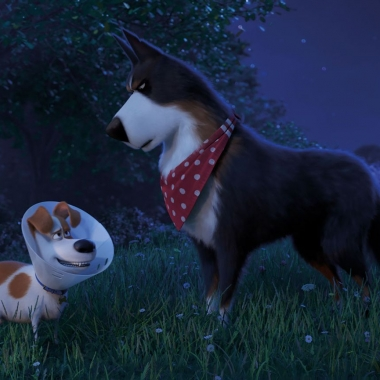 Max (Patton Oswald) and Rooster (Harrison Ford) meet on the farm. (Photo: Universal Pictures)