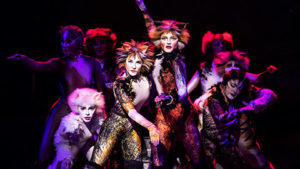 "Cast members of ""Cats"" n their costumes. (Photo: Kennedy Center)"