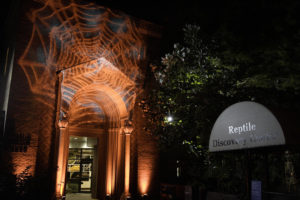The Reptile House at the National Zoo lit up with orange spider webs projected onto it. (Photo: National Zoo)