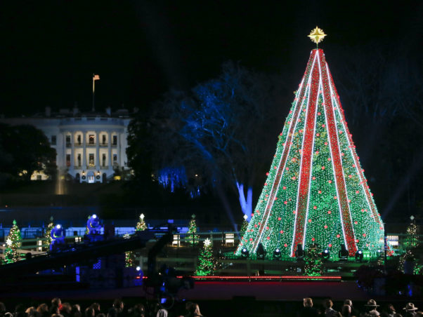 """The 2018 National Christmas Tree decorated in white lights with """"ribons"""" of red lights running vertically from the top. (Photo by Paul Morigi)"""
