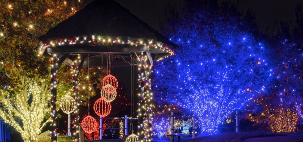 A gazebo and trees at Cameron Run decorated in lights. (Photo: Nova Parks)