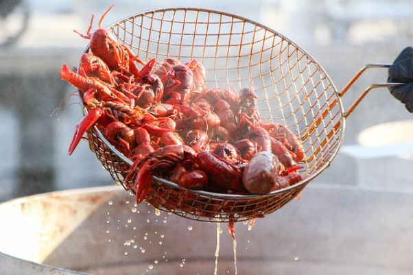 Crawfish in a basked being removed from boiling water. (Photo: Patrick Brown Jr./Pixabay)