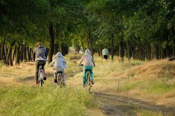 A father and two kids riding bikes along a wooded path. (Photo: Дмитрий Макаров/Pixabay)