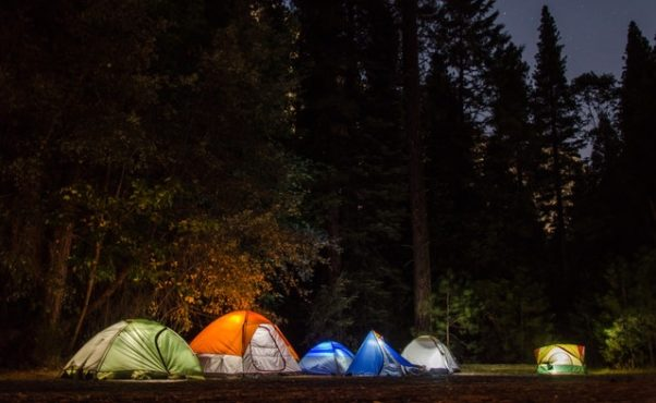 Six camping tents in a forest. (Photo: Snapwire/Pixabay)