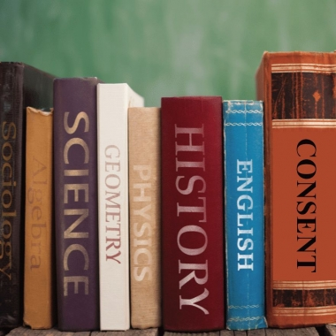 Eight textbooks reading Sociology, Algebra, Science, Geometry, Physics, History, English and Consent standing in a row. (Photo Illustration: DC on Heels)