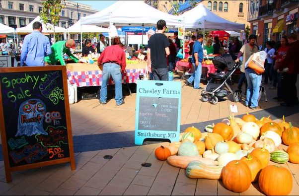 Shoppers at the Columbia Heights farmers market with pumpking and gourds in the foreground. (Photo: Stephenie DeKouadio/Flickr)