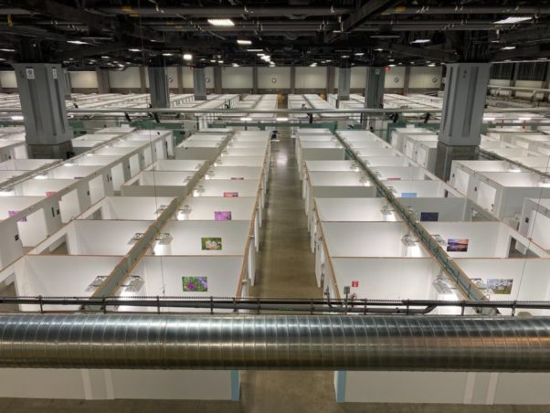 A second floor view down onto rows of make-shift hospital rooms set up in the Washington convention center. (Photo: Martin Austermuhle/WAMU)
