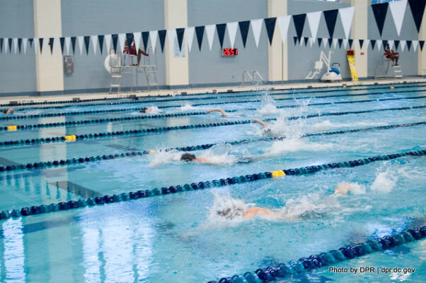 Swimmers swimming laps at the Wilson Aquatics Center. (Photo: D.C. Department of Parks and Recreation)